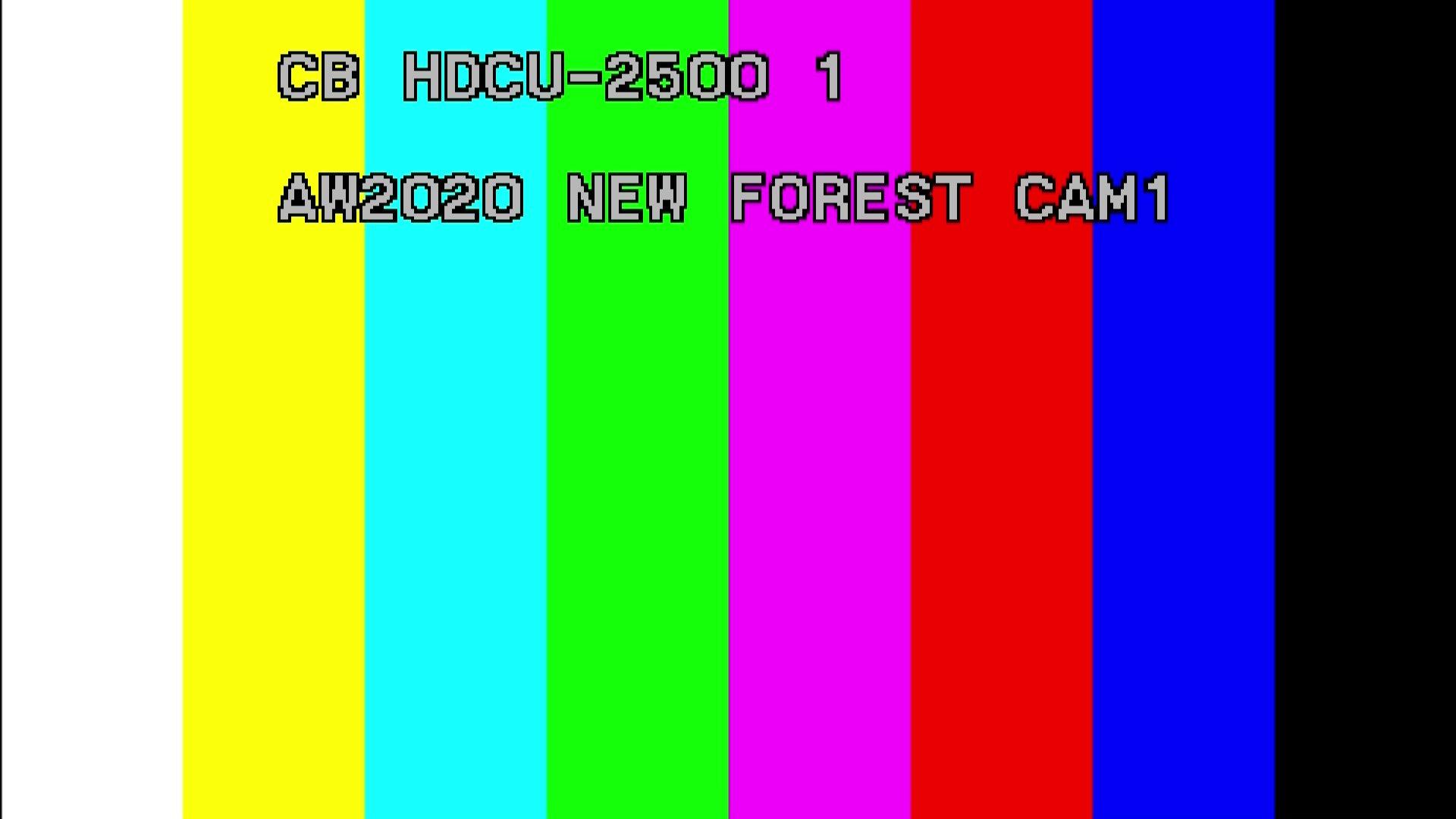 vlcsnap-2020-10-25-19h05m16s234.jpg